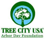 Tree City USA Award