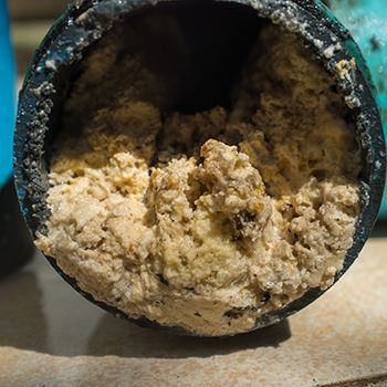 fat grease pipe