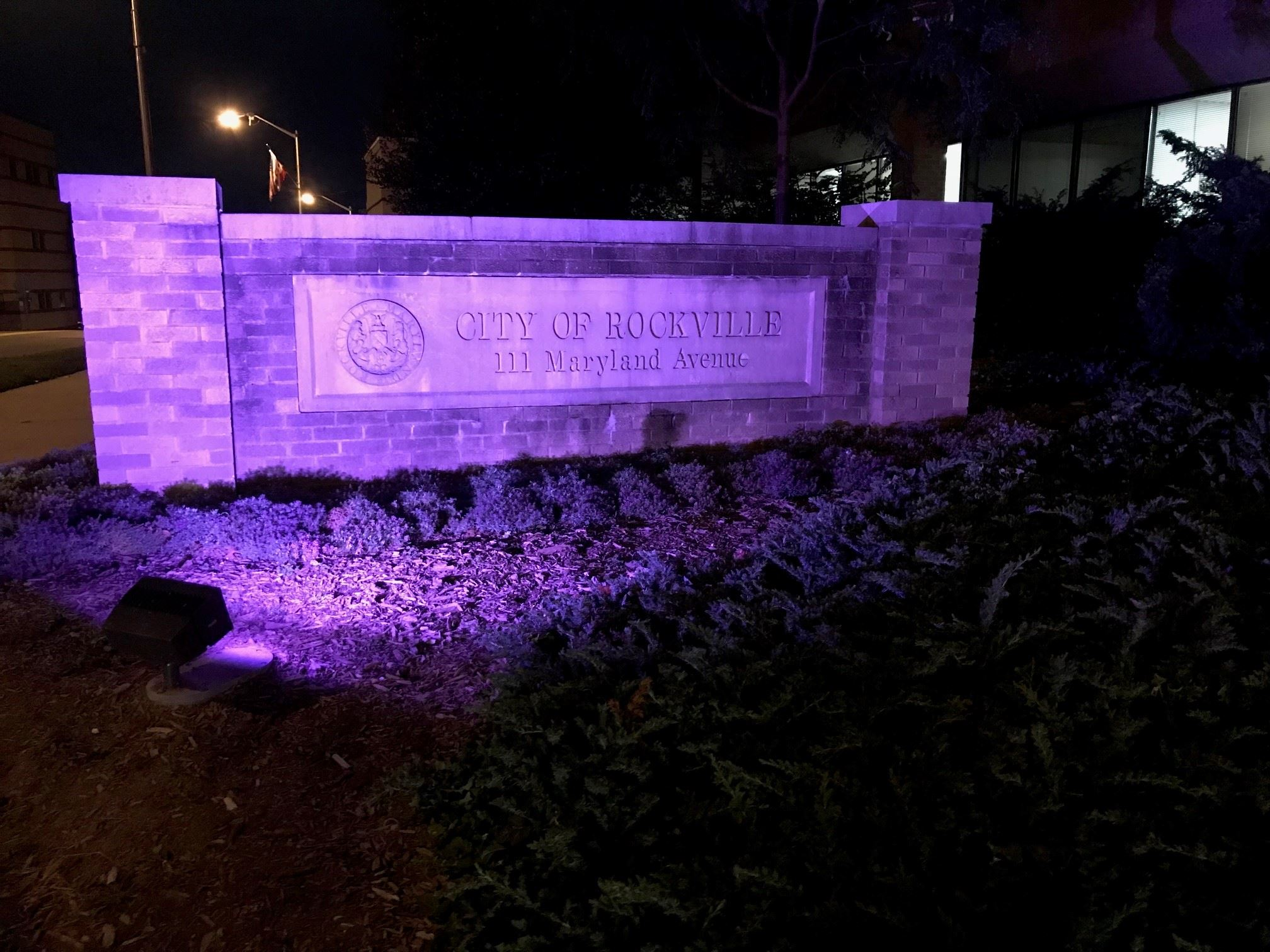 Rockville City Hall is lit purple to mark National Recovery Month in September.