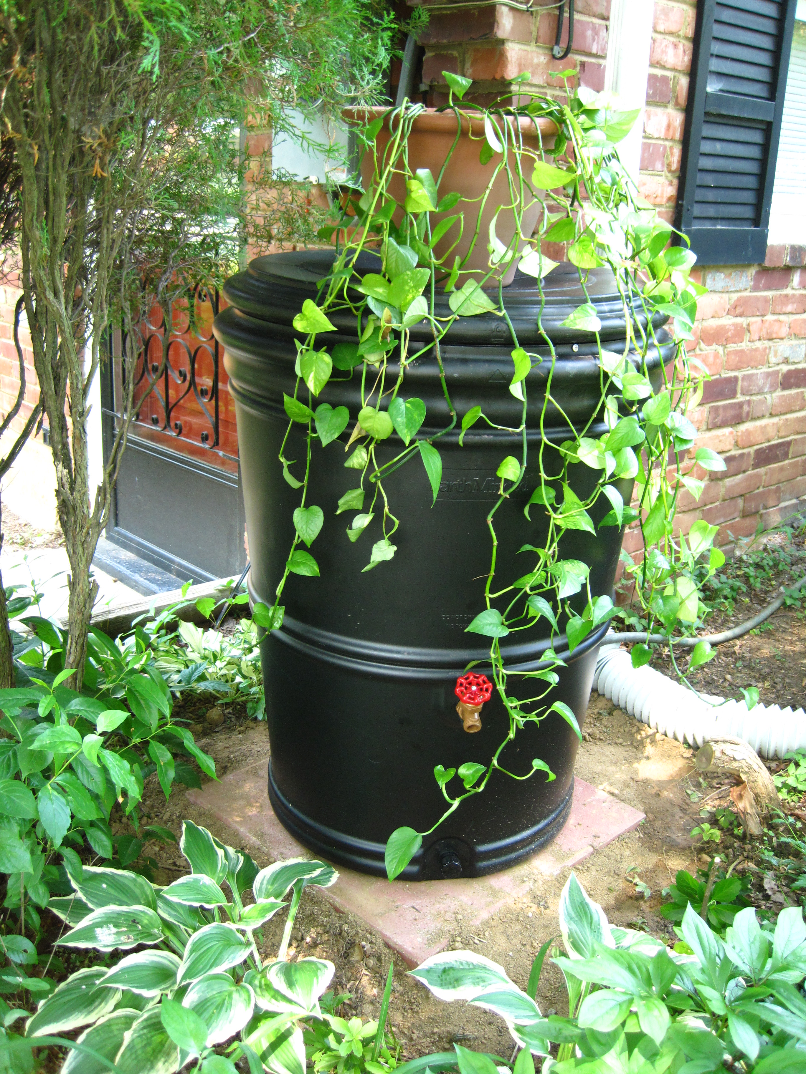 black rain barrel with planter on top