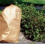 Paper yard waste bag and branches