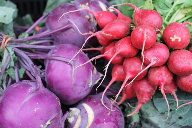 Radishes at the Farmers Market